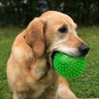 TPR Spiky Ball, duża - Ø ok. 12 cm| -5% Rabat dla nowych klientów| DARMOWA Dostawa od 99 zł (4054651629062)