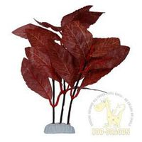 roślina z materiału nr 2 marki Riga