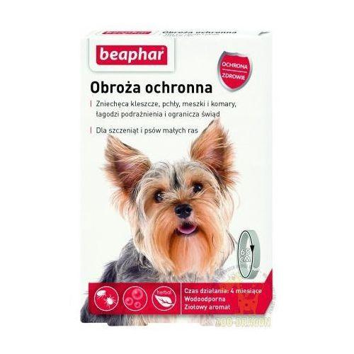 obroża ochronna dla małych psów marki Beaphar