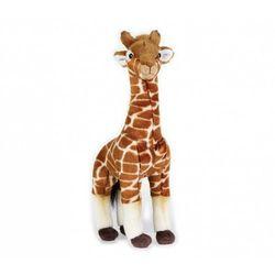 Pluszak National Geographic Żyrafa 35 cm - DARMOWA DOSTAWA OD 199 ZŁ!!!