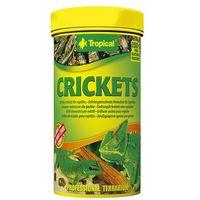 cricket - suszone świerszcze dla gadów i dużych ryb akwariowych 250ml/25g marki Tropical