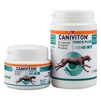 Caniviton forte plus 30 tabletek marki Vetoquinol