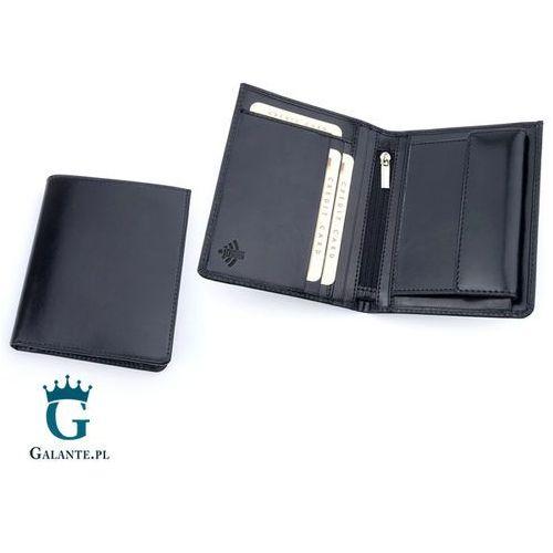 da8ade4a591b9 Zobacz w sklepie Pionowy Portfel Skórzany z Ochroną RFID 304M, 304M-ID. Stefania  leather