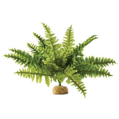 Exo terra roślina sztuczna – paproć boston fern rozmiar m Dostawa GRATIS od 99 zł + super okazje