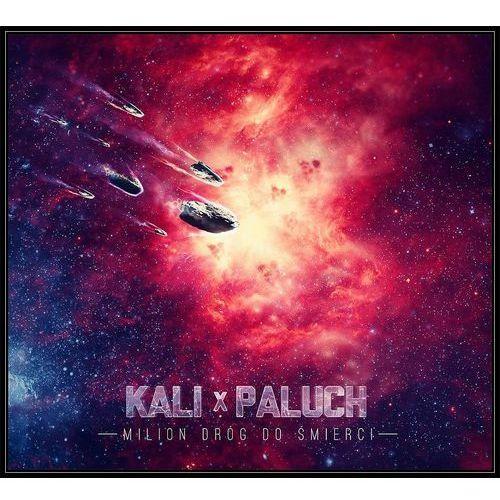 Universal music Milion dróg do śmierci (cd) - kali i paluch