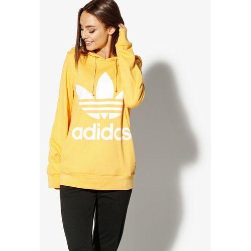 447a29f164 Bluza trefoil hoodie adicolor (Adidas) - sklep SkladBlawatny.pl