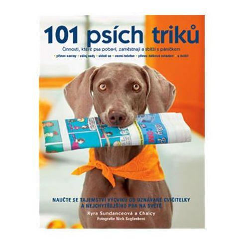 101 psích triků Kyra Sundance