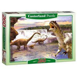 Puzzle  Castorland InBook.pl