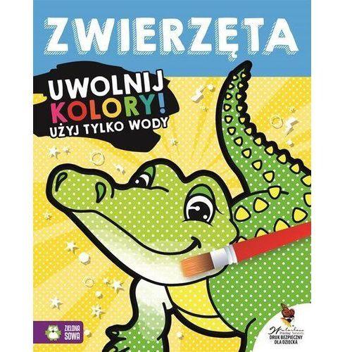 Zielona sowa Zwierzęta, uwolnij kolory - od 24,99zł darmowa dostawa kiosk ruchu