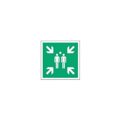 Znak Miejsce zbiórki do ewakuacji 350x350 E07