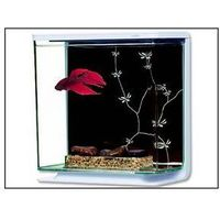 Akwarium Hagen Betta plast Marina Kit Contemporary 3l Plastik
