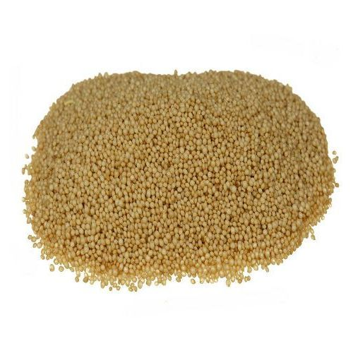 Polska Bio nasiona amarantusa 1 kg - Super oferta