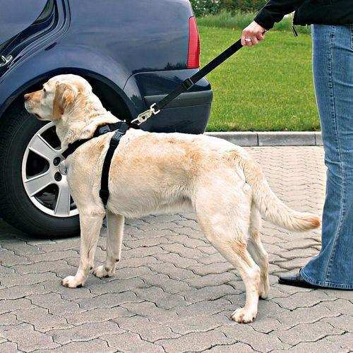 pasy bezpieczeństwa dla psa z szelkami - m marki Trixie