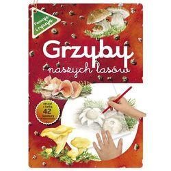 Książki dla dzieci  Maternicka Grażyna InBook.pl