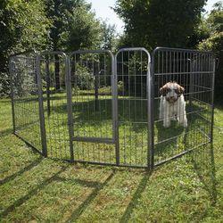 Pozostałe dla psów  zooplus Exclusive Zooplus