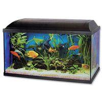 akwarium zestaw pacific - 60x30x30 - 54l. marki Cat-gato