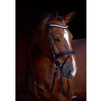 ogłowie wędzidłowe shine-on, skóra, rozmiar pony, 323555 marki Kerbl