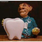 Wizytownik Dentysta dla Dentysty