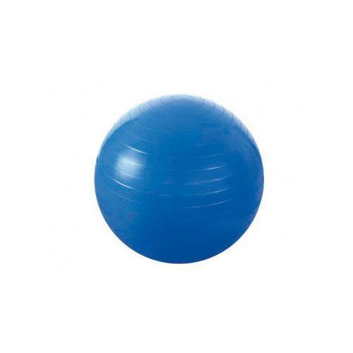 Hms Piłka gimnastyczna 65 cm niebieska
