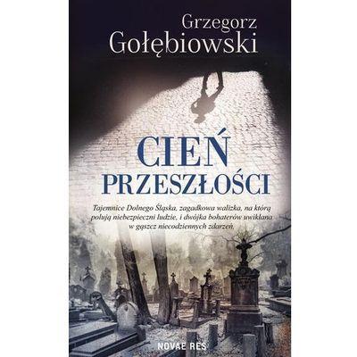 Książki horrory i thrillery Novae Res InBook.pl