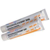 Orion pharma Orionpharma aptus dog reconvalescent pasta tubka 100g