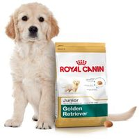 ROYAL CANIN GOLDEN RETRIEVER JUNIOR - 12KG + PROMOCJA 4+1 GRATIS!!!