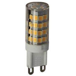 Żarówki LED  Ledsystems Castorama