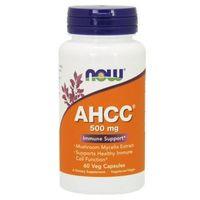 Kapsułki AHCC 500mg 60 kaps.