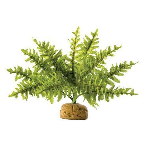 Exo terra roślina sztuczna – paproć boston fern rozmiar s Dostawa GRATIS od 99 zł + super okazje