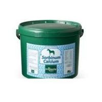 Calcium Sorbinum 10 kg StHippolyt PREPARAT Z WAPNIEM I WITAMINĄ C